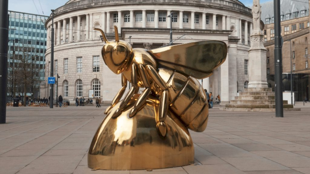 Bee In The City of Manchester